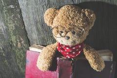 Τα παιδιά teddy αντέχουν με το βιβλίο Στοκ φωτογραφία με δικαίωμα ελεύθερης χρήσης