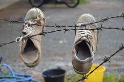 Τα παλαιά παπούτσια ζεύγους με λίγο χαμαιλέοντα στοκ εικόνα
