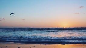 Τα πανιά ικτίνος-σερφ surfer στο ωκεάνιο κύμα Μαϊάμι κίνηση αργή απόθεμα βίντεο