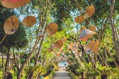 Τα παραδοσιακά καπέλα της γυναίκας του Βιετνάμ ` s Ο δημοφιλέστερος της γυναίκας του Βιετνάμ ` s Στοκ Εικόνες