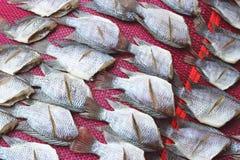 Τα παστά ψάρια ξεραίνουν ή αποξηραμένα ψάρια Στοκ φωτογραφίες με δικαίωμα ελεύθερης χρήσης