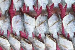 Τα παστά ψάρια ξεραίνουν ή αποξηραμένα ψάρια Στοκ φωτογραφία με δικαίωμα ελεύθερης χρήσης