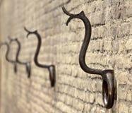 Παλαιά δαχτυλίδια αλόγων Στοκ Εικόνα