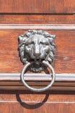 Τα παλαιά ρόπτρα πορτών με το κεφάλι λιονταριών, κλείνουν επάνω στοκ εικόνα