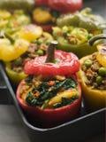 τα πιπέρια keema κουδουνιών aloo &kappa Στοκ εικόνα με δικαίωμα ελεύθερης χρήσης