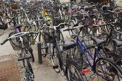 Τα ποδήλατα σταθμεύουν στο χώρο στάθμευσης κύκλων Στοκ εικόνα με δικαίωμα ελεύθερης χρήσης