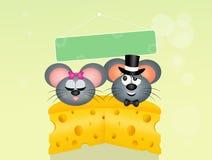 Τα ποντίκια συνδέουν ερωτευμένο στο τυρί Στοκ Εικόνα
