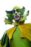 Τα πορτρέτα από το μεγάλο καρναβάλι παρελαύνουν το 2016 στη Μαδρίτη, Ισπανία Στοκ Φωτογραφίες
