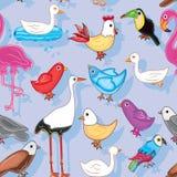 Τα πουλιά προσγειώνονται το άνευ ραφής πρότυπο Στοκ Εικόνα