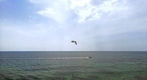 Τα πουλιά χαράζουν το εμπορικό αλιευτικό σκάφος από την ακτή της Ισπανίας στοκ φωτογραφία