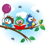 Τα πουλιά στο δέντρο διαβάζουν, τρώνε, στο μπαλόνι διανυσματική απεικόνιση