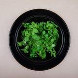 Τα πράσινα στο πιάτο Στοκ εικόνα με δικαίωμα ελεύθερης χρήσης