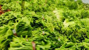 Τα πράσινα φρέσκα λαχανικά αντιμετωπίζουν το μανάβικο φιλμ μικρού μήκους