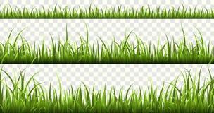 Πράσινα σύνορα χλόης Τα πράσινα χορτάρια φύσης πανοράματος θερινών λιβαδιών το απομονωμένο χλόη διανυσματικό σύνολο χορτοταπήτων  διανυσματική απεικόνιση