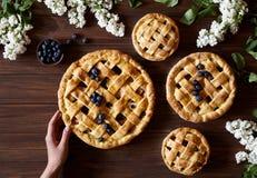 Τα προϊόντα αρτοποιίας πιτών πιτών της Apple με τα μήλα, το βακκίνιο και την κανέλα κρατούν τα θηλυκά χέρια στο σκοτεινό ξύλινο π Στοκ Φωτογραφία