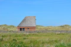 Τα πρόβατα προφυλάσσουν το κτήριο μπανγκαλόου στο εθνικό πάρκο de Muy στις Κάτω Χώρες σε Texel στοκ εικόνες
