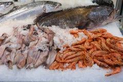 Τα πρόσφατα πιασμένα ευρωπαϊκά καλαμάρια, depp-νερό αυξήθηκαν γαρίδες, grouper και σολομών ψάρια στο μετρητή σε ένα ελληνικό κατά στοκ εικόνες
