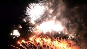 Τα πυροτεχνήματα ζωηρόχρωμα γιορτάζουν το κόμμα τη νύχτα απόθεμα βίντεο