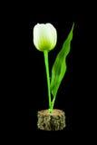 Τα πλαστικά λουλούδια τουλιπών απομόνωσαν το μαύρο υπόβαθρο Στοκ Εικόνες