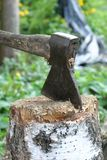 Τα ραβδιά τσεκουριών στο κούτσουρο Στοκ Εικόνα