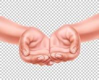 Τα ρεαλιστικά κενά χέρια κοίλαναν μαζί το διάνυσμα τρισδιάστατο ελεύθερη απεικόνιση δικαιώματος