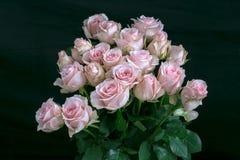 Τα ρόδινα τριαντάφυλλα Handbouquet με τη μαύρη λεπτομέρεια υποβάθρου και δροσιάς στα τριαντάφυλλα κάνουν τα τριαντάφυλλα να φανού στοκ εικόνες