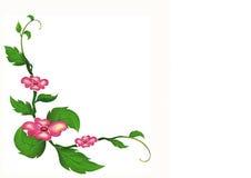 Τα ρόδινα λουλούδια με τα φύλλα Στοκ Εικόνες