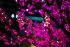 Τα ρόδινα τεχνητά λουλούδια Chrismas Στοκ εικόνα με δικαίωμα ελεύθερης χρήσης