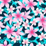 Τα ρόδινα τροπικά hibiscus λουλούδια με το μπλε αφήνουν το άνευ ραφής σχέδιο απεικόνιση αποθεμάτων