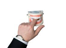 Τα σαγόνια δαγκώνουν ένα δάχτυλο Στοκ φωτογραφία με δικαίωμα ελεύθερης χρήσης