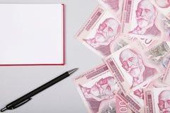 Τα σερβικά χρήματα, το σημειωματάριο και η μάνδρα μετρητών Δηναρίων, ασημώνουν τη piggy τράπεζα στον πίνακα στοκ εικόνες με δικαίωμα ελεύθερης χρήσης