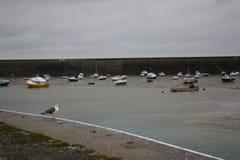 Τα σκάφη που βρίσκονται στην πλευρά στην ξηρά μαρίνα φαίνονται παιχνίδι στοκ φωτογραφία