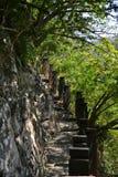 Τα σκαλοπάτια στην κορυφή Στοκ Εικόνα