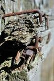 Τα σκουριασμένα καρφιά στην ξύλινη σύσταση σανίδων κλείνουν επάνω στοκ εικόνες με δικαίωμα ελεύθερης χρήσης