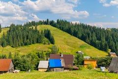 Τα σκούρο πράσινο δέντρα πεύκων κατεβαίνουν τους χλοώδεις λόφους άμεσα στο χωριό Στοκ Φωτογραφία