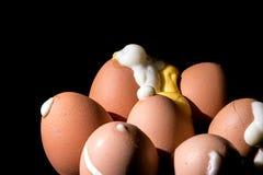 Τα σκληρά βρασμένα αυγά εξερράγησαν από τα διαπερασμένα και ραγισμένα κοχύλια Στοκ φωτογραφία με δικαίωμα ελεύθερης χρήσης