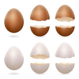 Τα σπασμένα αυγά ράγισαν το ανοικτό eggshell Πάσχας σχέδιο που τα τρισδιάστατα ρεαλιστικά εικονίδια έθεσαν την απομονωμένη διανυσ Στοκ Φωτογραφία
