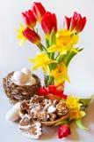 Τα σπιτικά περιφερειακά κέικ μελοψωμάτων στη λυγαριά τοποθετούνται με την τουλίπα και daffodils τα λουλούδια Στοκ Εικόνες