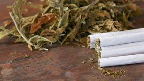 Τα σπιτικά τσιγάρα ή ρόλος-επάνω γεμισμένος με τον καπνό είναι σε έναν πίνακα δίπλα στα ξηρά φύλλα καπνών φιλμ μικρού μήκους
