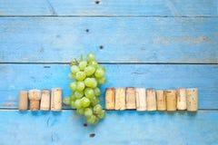Τα σταφύλια κρασιού και το κρασί βουλώνουν, Στοκ Εικόνες