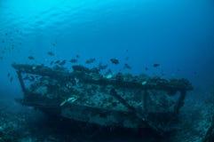 Τα συντρίμμια και τα ψάρια κολυμπούν σε Gili, Lombok, Nusa Tenggara Barat, υποβρύχια φωτογραφία της Ινδονησίας Στοκ εικόνα με δικαίωμα ελεύθερης χρήσης