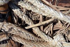 Τα σχοινιά για τα σκάφη λιμένων, ξεραίνουν τα φύλλα, υπόβαθρο Στοκ Φωτογραφίες