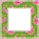 τα σύνορα ανθίζουν το ροζ απεικόνιση αποθεμάτων
