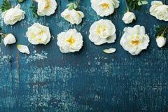 Τα σύνορα των άσπρων ροδαλών λουλουδιών και τα πράσινα φύλλα στο εκλεκτής ποιότητας υπόβαθρο κιρκιριών από το επίπεδο abovein βάζ στοκ εικόνες