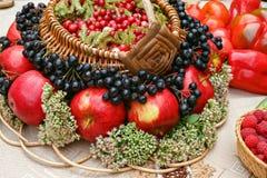 Τα τα βακκίνια και τα μήλα είναι στο καλάθι Στοκ φωτογραφία με δικαίωμα ελεύθερης χρήσης