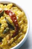 Τα τηγανητά Daal είναι το πιάτο λιχουδιών από τη βόρεια Ινδία Στοκ φωτογραφία με δικαίωμα ελεύθερης χρήσης