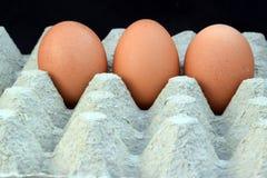 Τα τρία αυγά Στοκ φωτογραφία με δικαίωμα ελεύθερης χρήσης