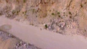 Τα τρεξίματα λαγών μακρυά από τον κηφήνα που τον ακολουθεί εναέρια όψη φιλμ μικρού μήκους