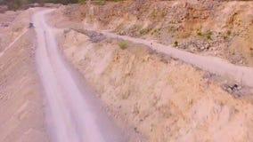 Τα τρεξίματα λαγών μακρυά από τον κηφήνα που τον ακολουθεί εναέρια όψη απόθεμα βίντεο
