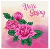 Τα τριαντάφυλλα σε ένα υπόβαθρο watercolor, μπορούν να χρησιμοποιηθούν ως ευχετήρια κάρτα, κάρτα πρόσκλησης για το γάμο, γενέθλια Στοκ εικόνα με δικαίωμα ελεύθερης χρήσης
